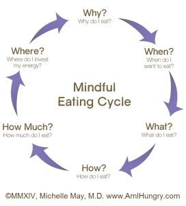 mindful eating cycle