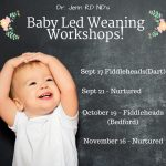 Baby Led Weaning – Fall Workshops in Halifax & Dartmouth